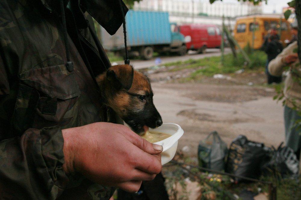 бездомные1 Медиапроект s-t-o-l.com