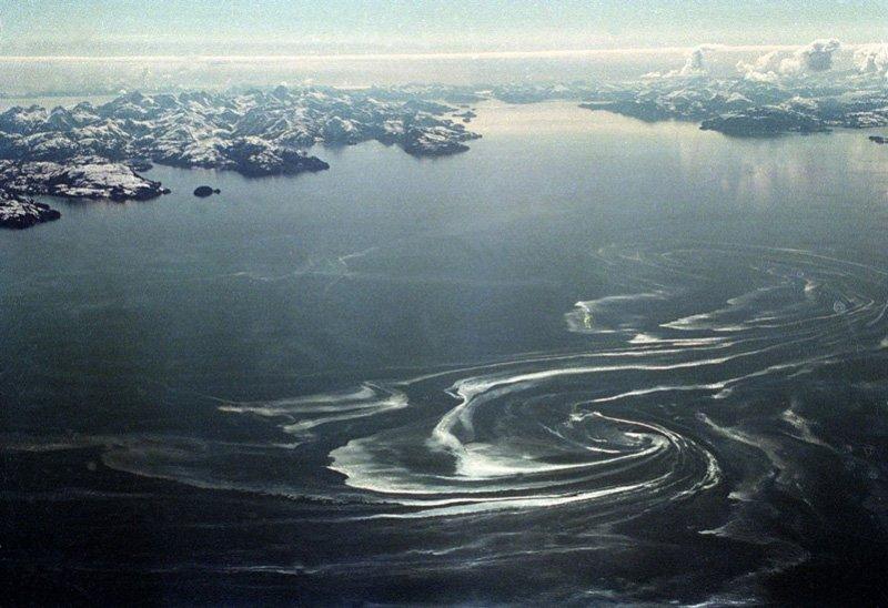 Нефтяное пятно в проливе принца Вильгельма в 80 километрах от места, где сел на мель танкер «Эксон Вальдез», 1989 год Медиапроект s-t-o-l.com