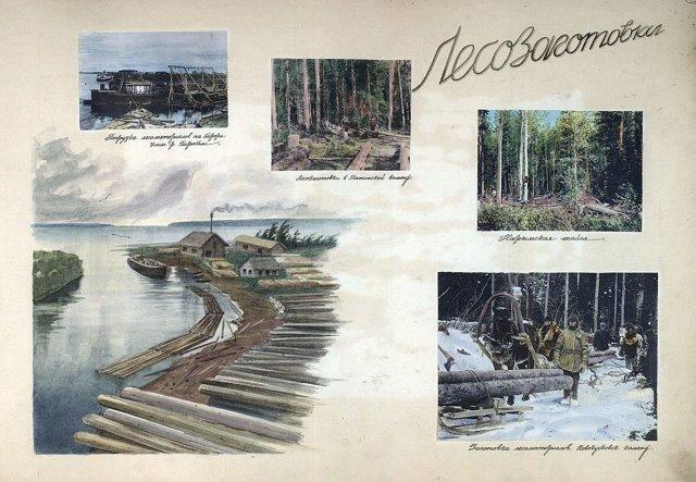 Лесозаготовки в испрвительных лагерях, 30-е годы Медиапроект s-t-o-l.com