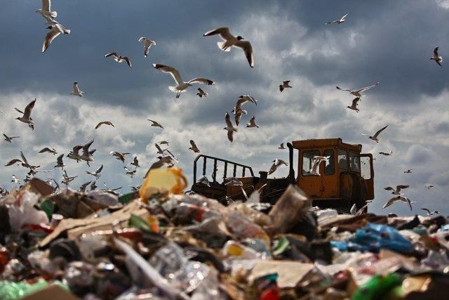 Свалка, мусор, переработка, экология Медиапроект s-t-o-l.com