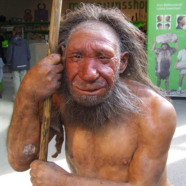 Неандерталец Медиапроект s-t-o-l.com