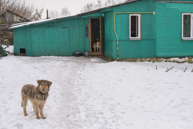 Дом в деревне Каспля Медиапроект s-t-o-l.com