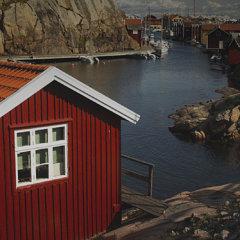 Шведская корона: страна без карантина