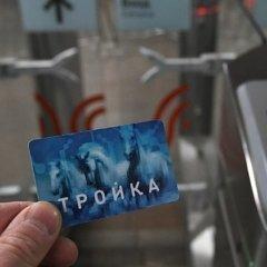 Навальный, Алёнка и Северная Корея