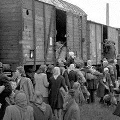 Немцы ответили за Сталина